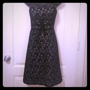 NWOT WHBM strapless lace cocktail dress sz 2